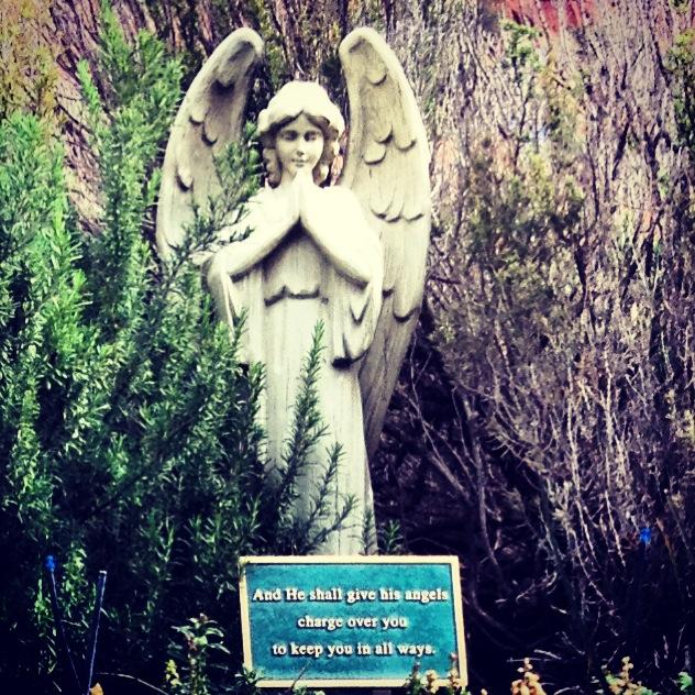 Angels watching overus